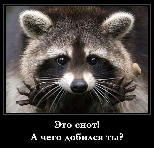 Новые смешные анекдоты каждый день на сайте Novyeanekdotyru
