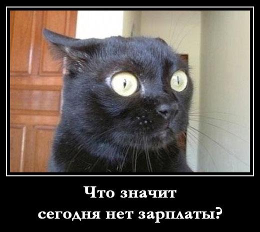 Анекдоты 2018  Новые лучшие короткие анекдоты свежие