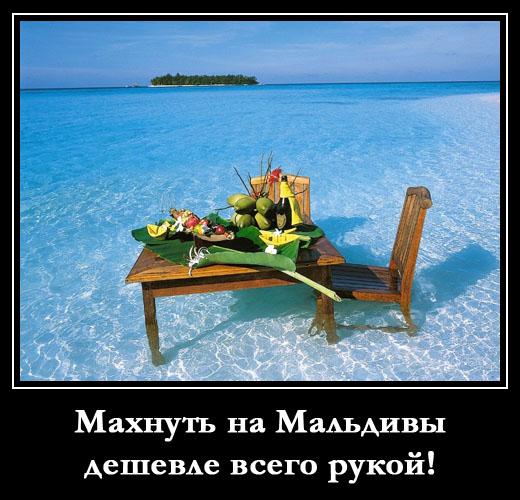 Картинки по запросу смешные картинки про отдых