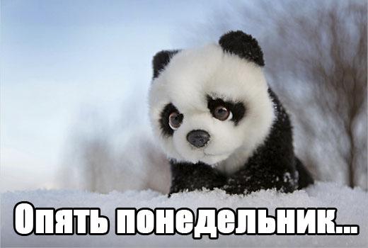 Визы на украину для россиян новости сегодня